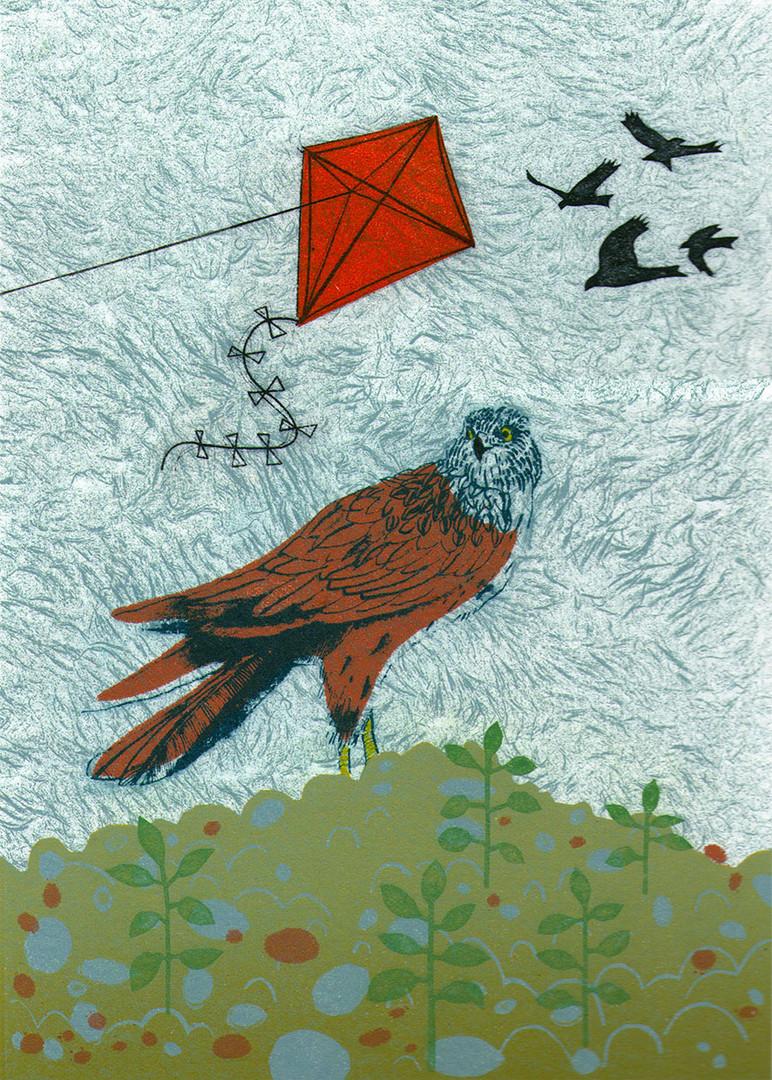Pentimento Ceramics and Print_Red Kite_homonym_bird_bird of prey_printmaking_collograph_gum arabic transfer_A4 print_limited edition print_british birds_original print