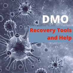 DMO Recovery Tools and Help.png