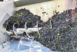 Wineries worry about impact of water rules