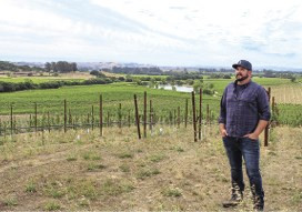 Winery tasting rooms reopen to uncertainty