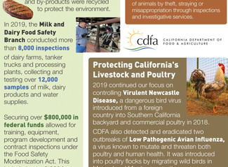 2019 in Review: Protecting Animal Health & Food Safety