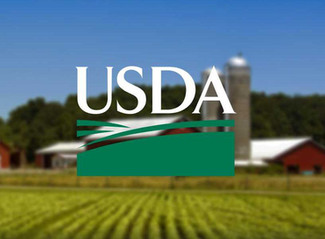 USDA Announces Grants for Urban Agriculture and Innovative Production