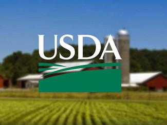USDA announces details of direct assistance program to farmers