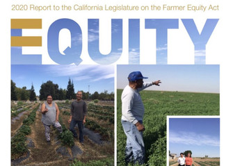 Equity and Access in Agriculture: Report of California's Farmer Equity Act