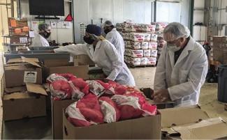 Expanded USDA food box program begins operation