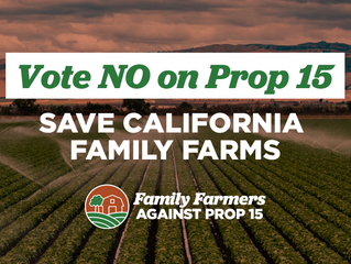 President's message: Vote no on Proposition 15