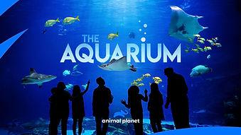 aquarium logo 2.jpg