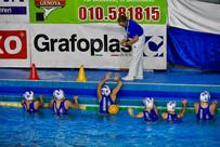 arbitri pallanuoto 1  foto Giorgio Scarf