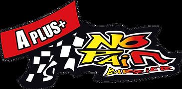 nopainbarriers-logo+.png