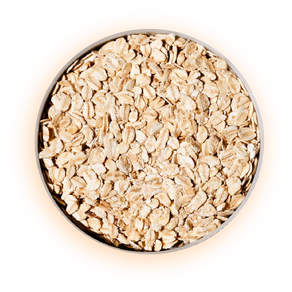 Wonderful Oats & how they support redness / dry and itchy skin for dogs