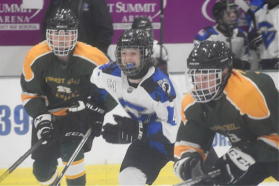 vhockey2.jpg