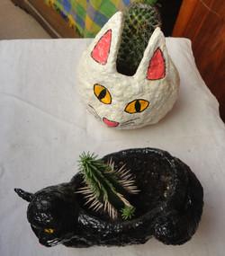 Kedi / Cat 65 TL-adet/piece