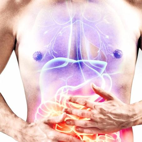 Maladies inflammatoires chroniques de l'intestin : des graisses prometteuses