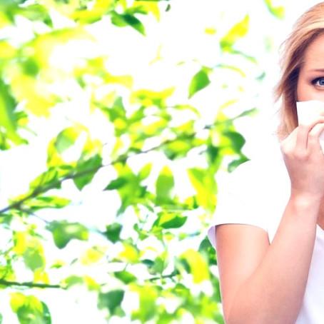 En finir avec les rhinites allergiques