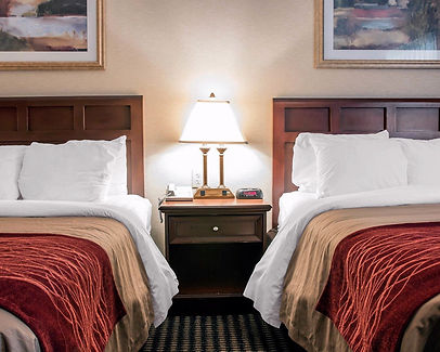 Traditional King or Queen Guestroom