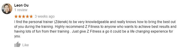 leon review Z Fitness personal trainer .
