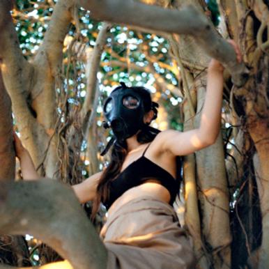 LIFE (de cómo los árboles nos salvaron la vida)