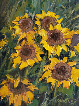 Carl Junction Sunflowers