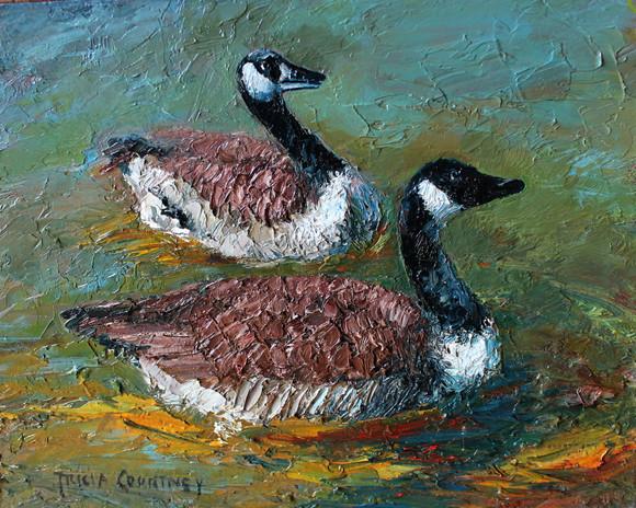 Geese on Shoal Creek.jpg