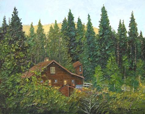 Cabin Near Breckenridge