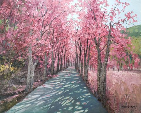 Strolling Through Pink
