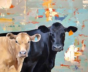 Cows and Confetti
