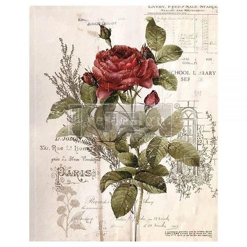 ReDesign Decor Transfers - Botanical Rose