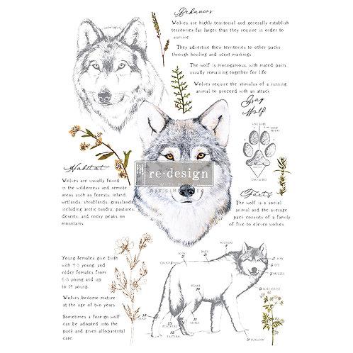 Redesign Transfer - Gray Wolf