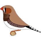 Fawn Cock.png