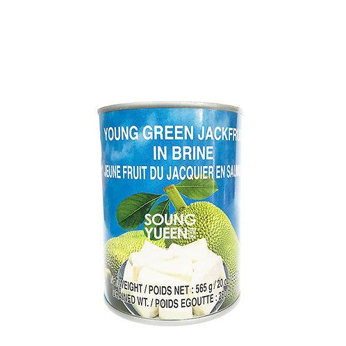 COCK YOUNG GREEN JACKFRUIT IN BRINE 565G