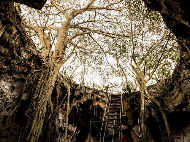 Last week in X'tuhil cenotes near Merida