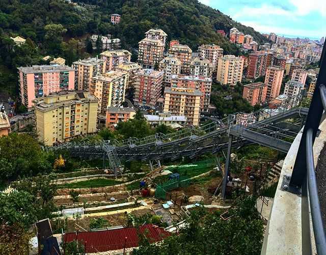 Example of terraced gardens found a over Genova.jpg View looking towards the ocean