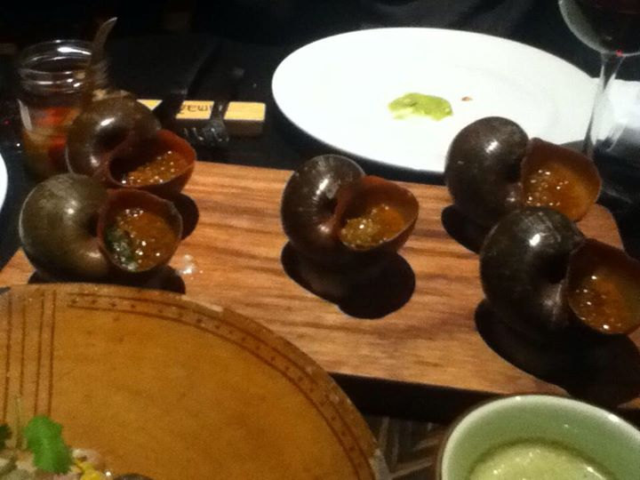 River Snails at Amaz, Lima