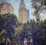 Madison Square Park, Midtown Manhattan