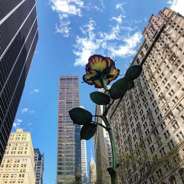 Zuccotti Park, Lower Manhattan (sculpture by Isa Genzken)