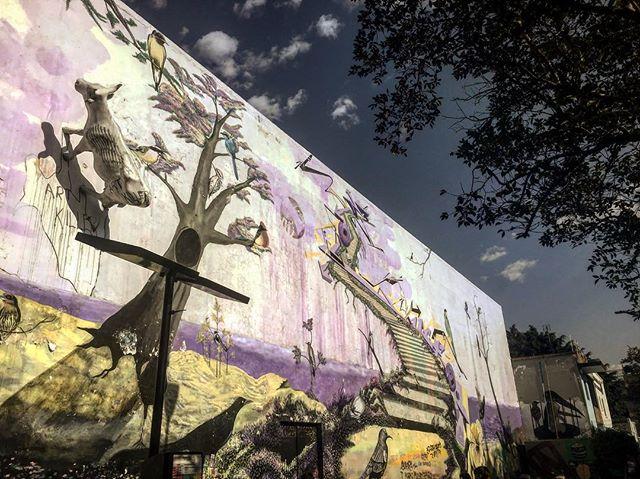 Vallarta next to UdeG gallery