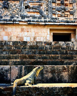 Not as famous as Chichen Itzá, the Mayan