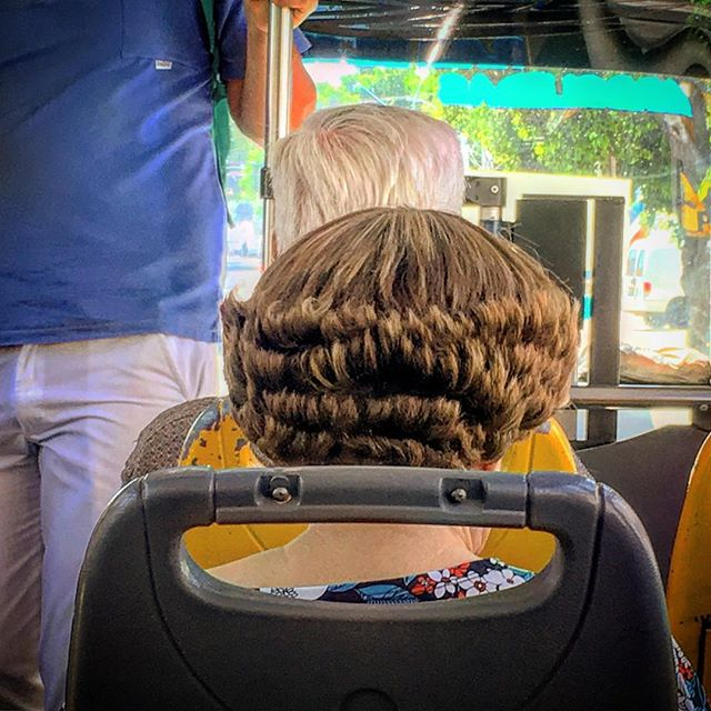 Hairs on the bus