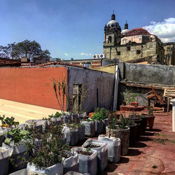 Oaxaca City, Destilado roof