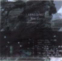 Turbulent cover LG.jpg