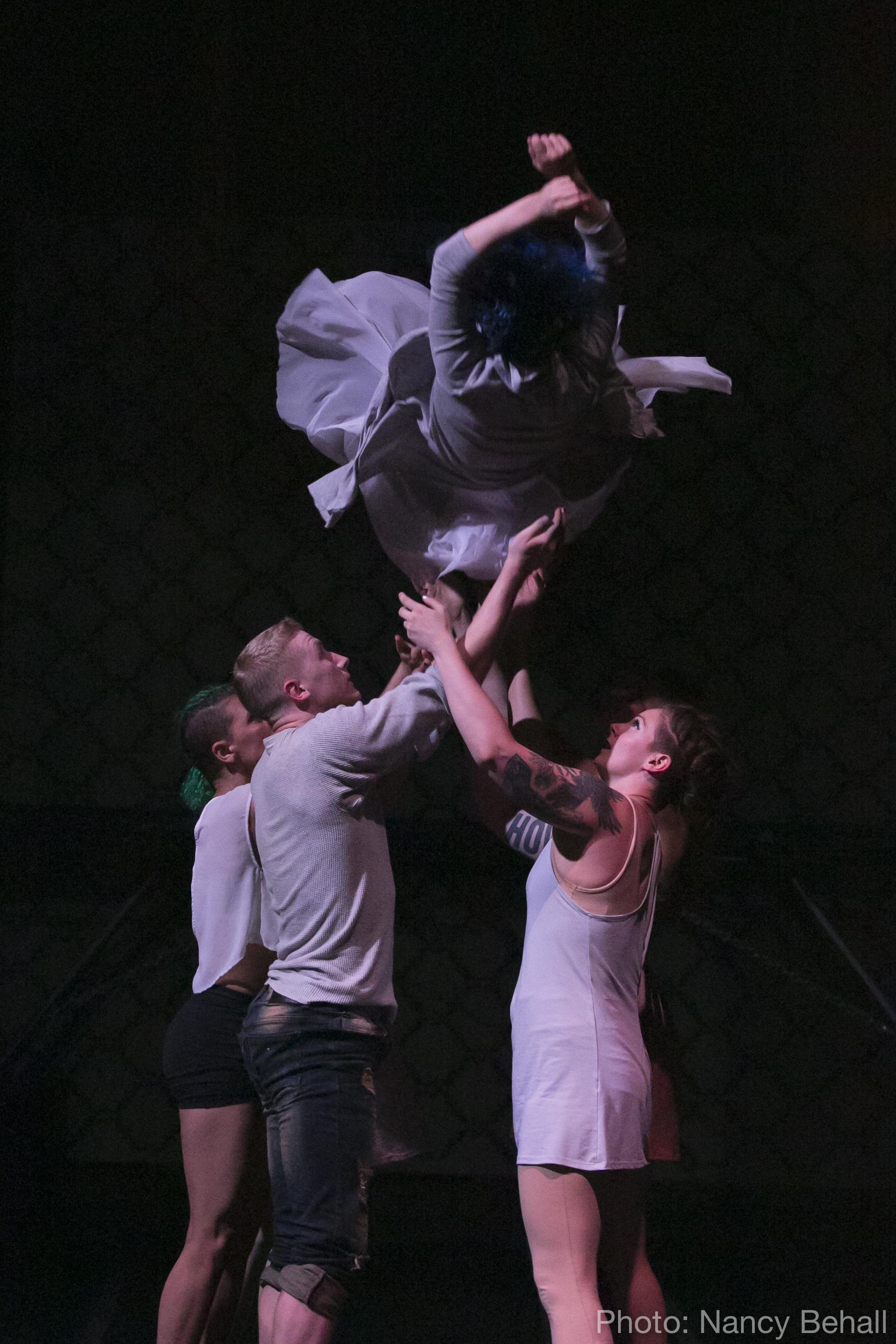 final show-flock