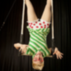 aloft teacher, trapeze, upside down