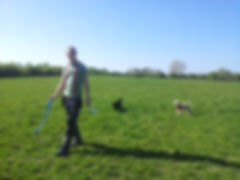 Socil dog walking adventures with dog walker in Redhll, Salfords, Earlswood.