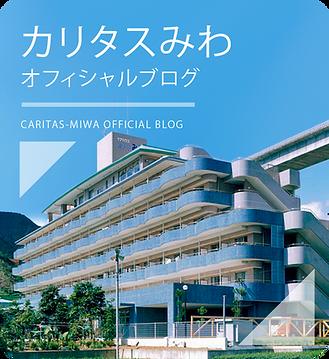 miwaBlog.png