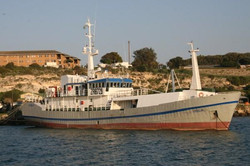 Guard Vessel Viola