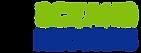 logo-or-color bn.png