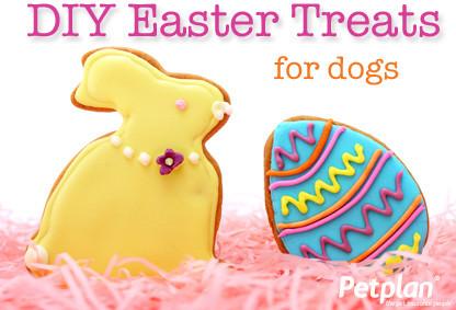 Dog Friendly Peanut Butter Eggs