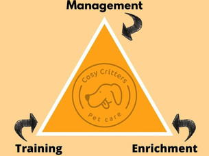 The 3 parts of training