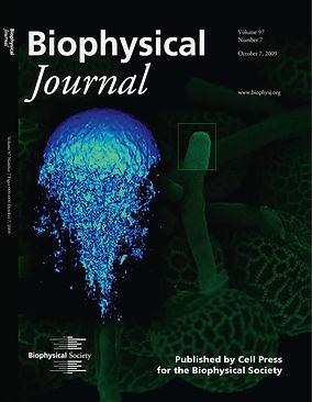 BiophysJ2009.jpg