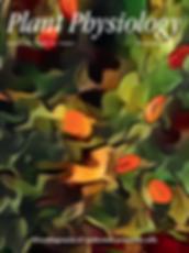 Screen Shot 2019-09-01 at 2.41.26 PM.png